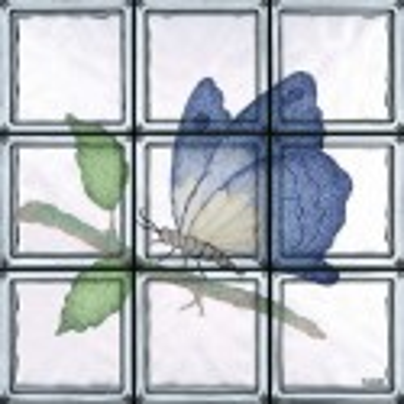 Farfalla Saturnia (9 Bloques)