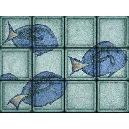 Composición Pesce Chirurgo de 12 Bloques